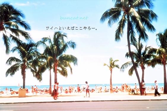 hawai_wp