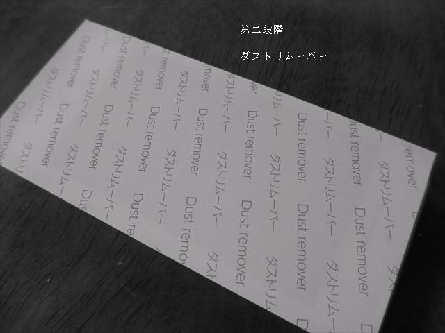IMG_0370_wp