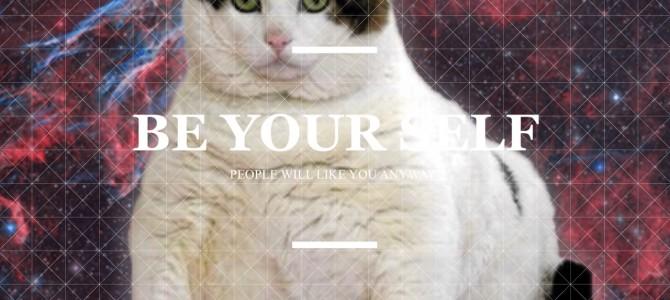 CatPaint 猫と共演