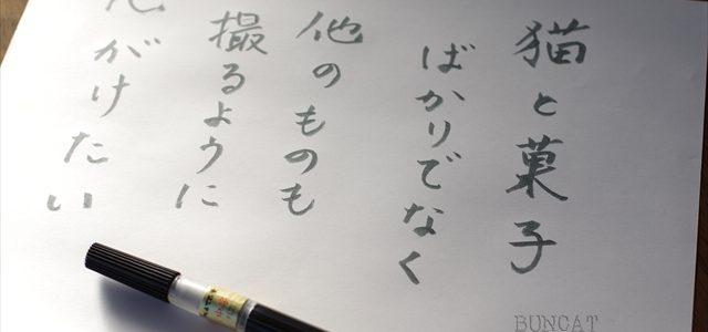 筆ペン書き初め 2017