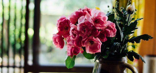薔薇をいただきまして感謝